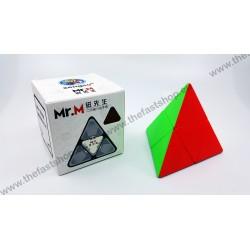 ShengShou Mr. M Magnetic Pyraminx 2x2x2 -  Rubik's Cube