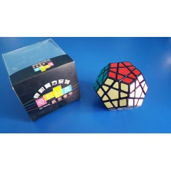 QJ Megaminx cube