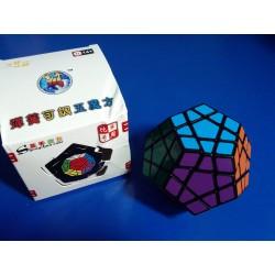 ShengShou Megaminx cube