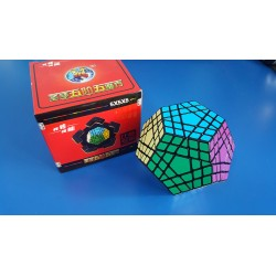 ShengShou Gigaminx - Cub Rubik